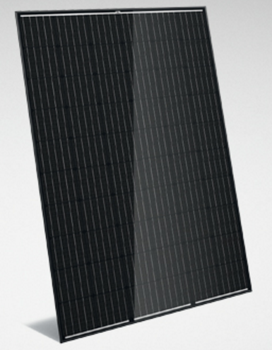Trina HM+ TSM-300DD05A.08(II) - 300 Wp (BFR)